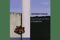 Il Gardellino - Concerti Per La Pieta [CD]