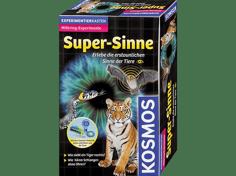 KOSMOS Super-Sinne  Mitbringexperiment, Mehrfarbig