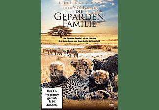 Die Geparden Familie DVD