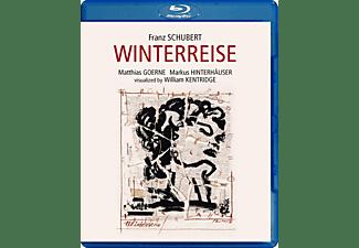 Matthias Goerne, Markus Hinterhaeuser - Winterreise  - (Blu-ray)