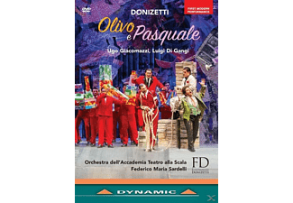 Bruno Taddia, Fillippo Morace, Laura Giordano, Pietro Adaini, Orchestra dell'Accademia Teatro alla Scala, Coro Donizetti Opera - OLIVO E PASQUALE  - (DVD)