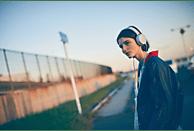 SONY MDR-XB550AP, On-ear Kopfhörer  Weiß