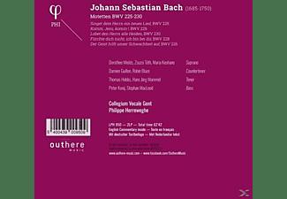Philippe Herreweghe (dir) Collegium Vocale Gent - Motetten BWV 225-230  - (Vinyl)
