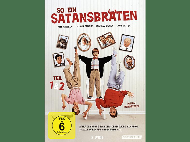 So ein Satansbraten & So ein Satansbraten kommt selten allein [DVD]