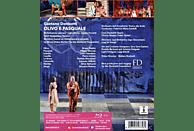 Orchestra dell Accademia Teatro alla Scala, Sardelli Federico Maria - Olivo e Pasquale [Blu-ray]