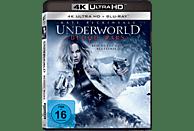 Underworld: Blood Wars [4K Ultra HD Blu-ray + Blu-ray]