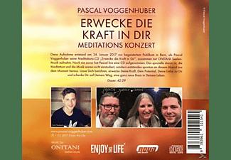 Pascal Voggenhuber - Erwecke die Kraft in Dir  - (CD)