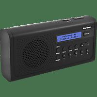 KARCHER DAB 2405, Radio