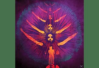 Warp Transmission - Tamam Shud  - (CD)