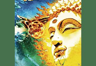 Rikard Sjöblom's Gungfly - On Her Journey To The Sun  - (CD)