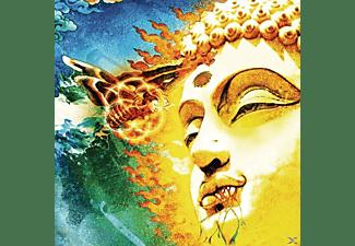 Rikard Sjöblom's Gungfly - On Her Journey To The Sun  - (LP + Bonus-CD)