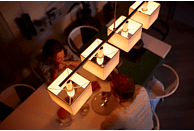 PHILIPS PL69520 Hue LED Leuchtmittel, Weiß