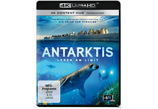 Antarktis - Leben am Limit 4K Ultra HD Blu-ray