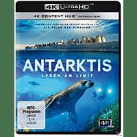 Antarktis - Leben am Limit [4K Ultra HD Blu-ray]