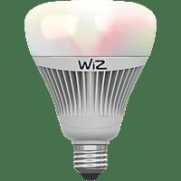 WIZ WZ0189081 LED Leuchtmittel, Weiß