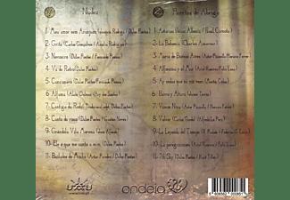 Dulce Pontes - Peregrinaçâo  - (CD)