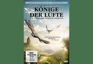 David Attenborough: Könige der Lüfte (3 DVDs) DVD