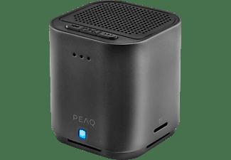 PEAQ PPA21BT Bluetooth Lautsprecher, Schwarz