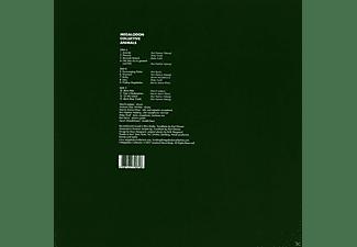 Megalodon Collective - Animals  - (Vinyl)
