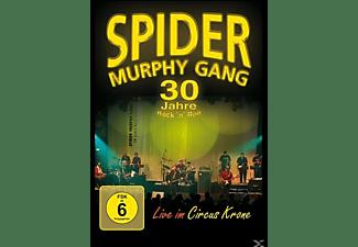 Spider Murphy Gang - 30 Jahre Rock 'n' Roll  - (DVD)