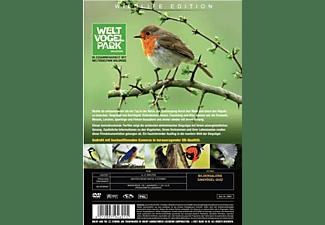 Singvögel unserer Heimat DVD
