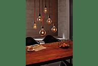 PAULMANN 283.95 Rustika LED Leuchtmittel E27 Warmweiß 4 Watt 250 Lumen