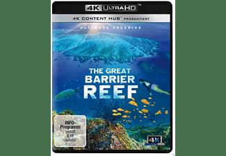 Great Barrier Reef 4K - Ultimate Freedive 4K Ultra HD Blu-ray