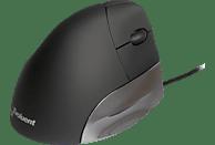 EVOLUENT Vertical Mouse Standard ergonomische Maus, Schwarz