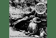 Excruciating Terror - LEGACY OF TERROR SESSIONS [Vinyl]