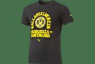 PUMA BVB 09 Dortmund T-Shirt, Grau