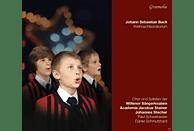 Wiltener Sängerknaben, Academia Jacobus Stainer - Weihnachtsoratorium [CD]