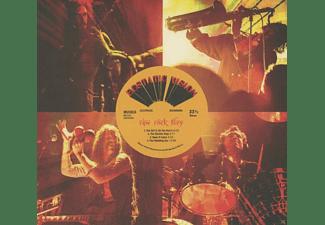 Ecstatic Vision - Raw Rock Fury  - (CD)