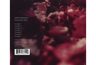 Petre Inspirescu - Vintul Prin Salcii [CD]