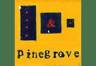 Pinegrove - Everything So Far  - (Vinyl)