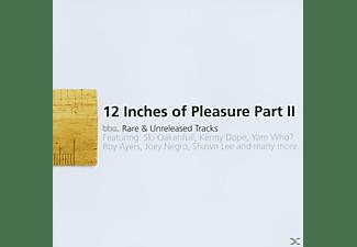 """VARIOUS - 12"""" OF PLEASURE II  - (CD)"""
