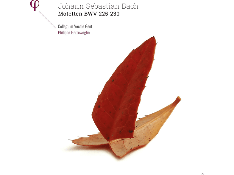 Philippe Herreweghe (dir) Collegium Vocale Gent - Motetten BWV 225-230 [Vinyl]