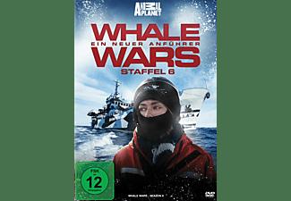 Whale Wars - Ein neuer Anführer - Staffel 6 (Animal Planet - 2 Discs) DVD