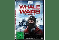 Whale Wars - Ein neuer Anführer - Staffel 6 (Animal Planet - 2 Discs) [DVD]