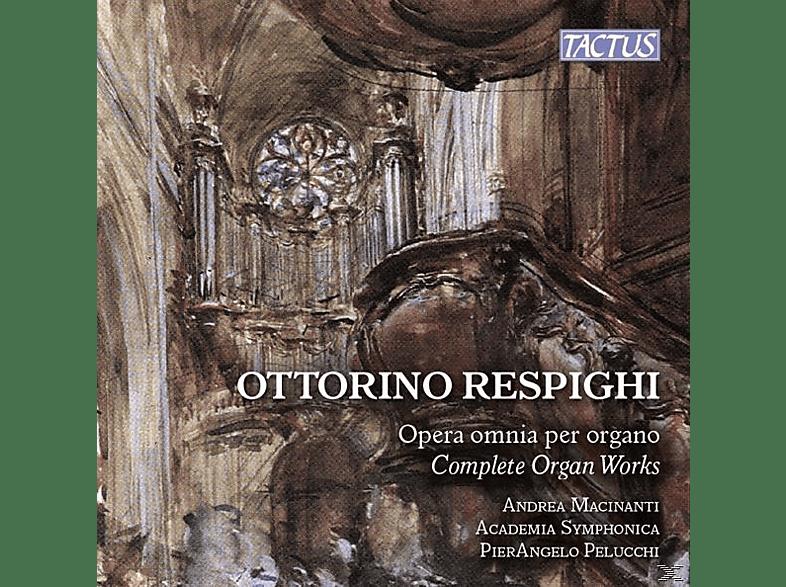 Andrea Macinanti - Sämtliche Orgelwerke (GA) [CD]