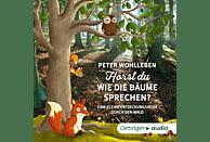 Peter Wohlleben - Hörst du, wie die Bäume sprechen? Eine kleine Entdeckungsreise durch den Wald (2 CD) - (CD)