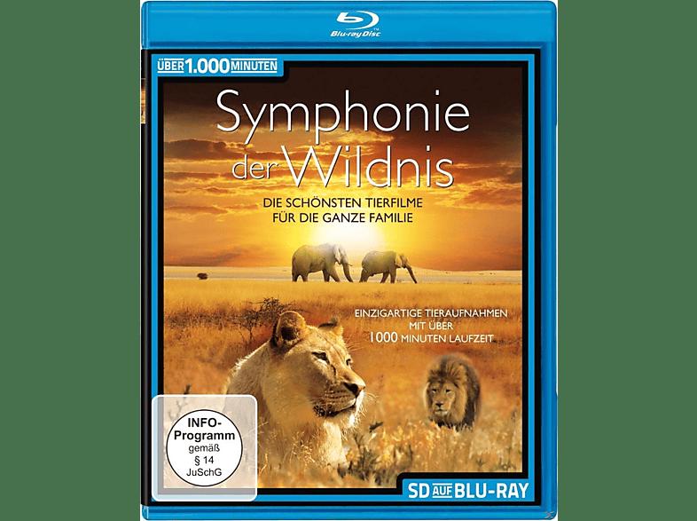 Symphonie der Wildnis [Blu-ray]