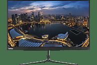 LENOVO L24i-10 23,8 Zoll Full-HD Monitor (4 ms Reaktionszeit, Nein, 60 Hz)