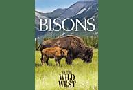 Bisons Im Wilden Westen [DVD]