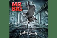 Mr. Big - Defying Gravity (Ltd.Gatefold/Black Vinyl) [Vinyl]
