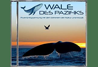 VARIOUS - Wale des Pazifiks  - (CD)