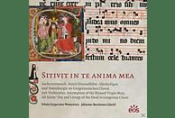 J./Schola Gregoriana Monacensis Berchmans Göschl - Sitivit In Te Anima Mea [CD]