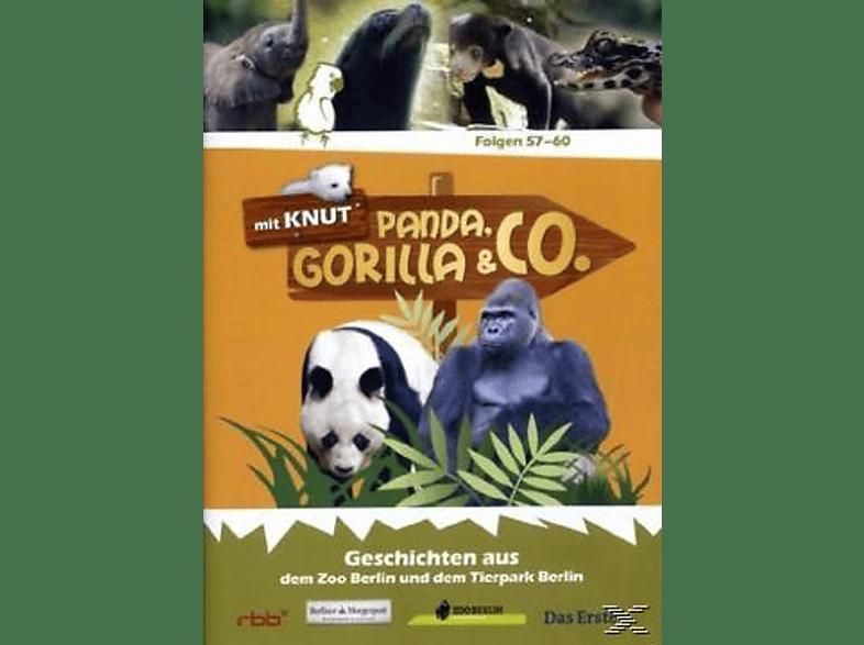 Panda, Gorilla & Co. Vol.7 (Folgen 57-60) [DVD]