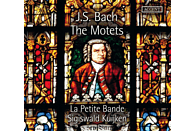 Kuijken/Petite Bande - Motetten BWV 225-230 [CD]
