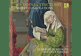 Le Miroir De Musique - Secret Consolations  - (CD)