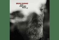 Bruce Sudano - 21st Century World [Vinyl]